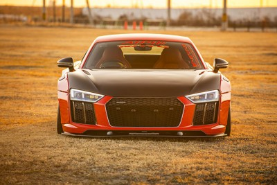 Alpil Audi R8-RSR V10 PLUS Produced by NEWING